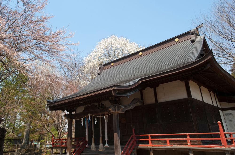 藤崎町 地名の由来 鹿嶋神社