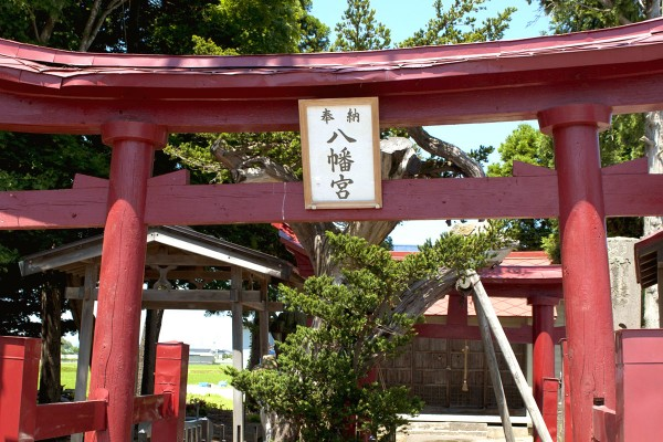 徳下八幡宮・イチイの古木