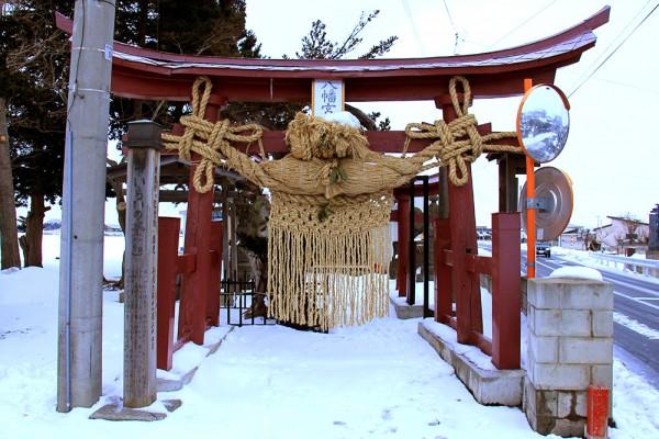 徳下八幡宮・イチイの古木1