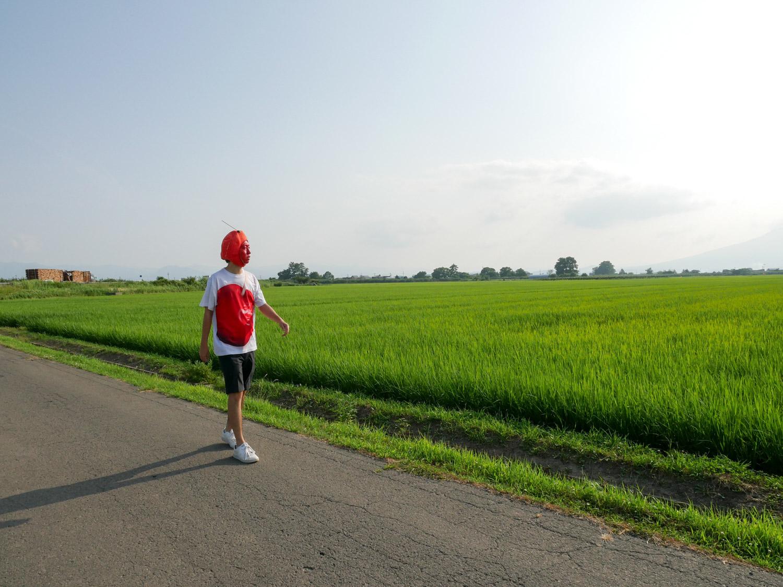 藤崎町 グルめぐりスタンプラリー2017 藤崎散策スポット編